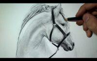 Comment dessiner une tête de cheval [Tutoriel]