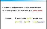 Les familles de mots. Leçon de français pour le CE1, CE2, CM1, CM2 french learning