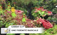 Leçon 3 : Questionnaire JA, Sabbat après-midi 11 Janvier 2020, Une fidélité radicale