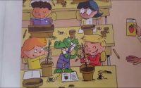Le 9ème leçon de Taoki et compagnie : la lettre F - f : Des plantes dans la classe
