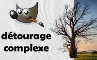 Comment détourer une image complexe rapidement et simplement sur Gimp - Tutoriel FR