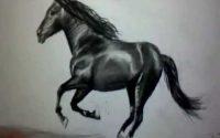 Comment dessiner un cheval au galop [Tutoriel]