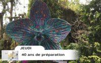 Leçon 8 : Questionnaire JA, Jeudi 20 Février 2020, 40 ans de préparation