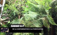 Leçon 9 : Sabbat après-midi 22 Février 2020, De la contamination à la purification