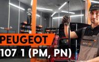 Comment remplacer verin de coffre sur PEUGEOT 107 1 (PM, PN) [TUTORIEL AUTODOC]