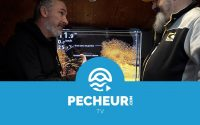 Décryptage d'une vue Down Imaging (DI) - Tutoriel Pecheur.com