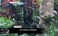 Leçon 8 : Mardi 18 Février 2020, Les juges s'assirent