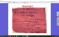 Les sons S/Z leçon O7  CE1