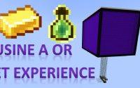 Tutoriel -  Usine à or et expérience pour Minecraft Java 1.14.4+