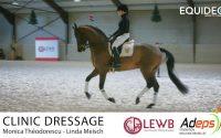 Comment améliorer votre équitation ? Regardez la leçon de dressage de Monica Théodorescu. A voir !