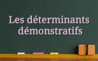Leçon 8: Les déterminants démonstratifs