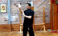 Wing Chun Kung Fu  - TUTORIEL - Les principes du PAK SAO en déplacement avec ou sans partenaire