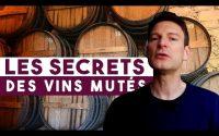 7 minutes pour COMPRENDRE Les secrets des VINS MUTÉS (Leçon n°52)