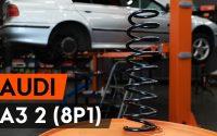 Comment remplacer ressort de suspension arrière sur AUDI A3 2 (8P1) [TUTORIEL AUTODOC]