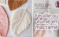 Feuille ou plume en macramé | Tutoriel DIY