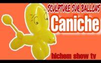 Sculpture sur ballons tutoriel caniche