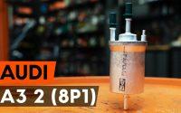 Changer un filtre à carburant sur AUDI A3 2 (8P1) [TUTORIEL AUTODOC]