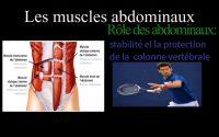 🏀Contenu nouveau et exclusif🧘♂️Leçon sur les muscles Abdominaux 🧘♀️