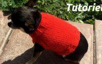 DIY Petit pull pour chiens Tutoriel