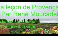 La leçon de Provençal n°35
