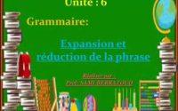 Leçon de grammaire :  expansion et réduction de la phrase