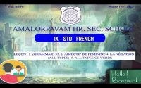 9th- FRENCH - Leçon : 2 (Grammar) 3. L' adjectif de feminine 4. La Négation  (All types)
