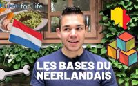 Apprendre le néerlandais - cours de néerlandais facile partie 1: les bases fondamentales