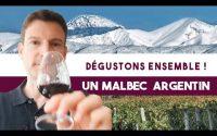 Dégustons ensemble un malbec d'Argentine ! (Leçon 76)
