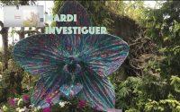 Leçon 1 : Questionnaire JA, Mardi 30 Juin 2020, Investiguer