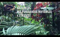Leçon 4 : Mercredi 22 Juillet 2020, Des puissance invisibles à l'oeuvre
