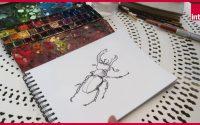 """Simon Hureau : Comment dessiner """"L'Oasis"""" ? La leçon de dessin confinée"""