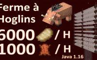🛠 Tutoriel -  Ferme à Hoglins pour Minecraft Java 1.16+
