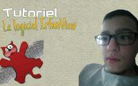Tutoriel - Le logiciel Irfanview