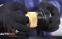Changer l'huile moteur et le filtre à huile FIAT PUNTO TUTORIEL | AUTODOC