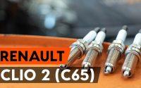 Comment remplacer un bougie d'allumage sur RENAULT CLIO 2 (C65) [TUTORIEL AUTODOC]