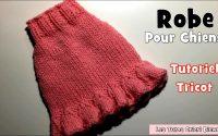 Tutoriel: Robe à Volant Pour Chiens au tricot DIY