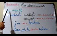 leçon 33: grammaire :les déterminants(article et adjectif)