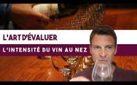 Comment évaluer l'intensité d'un vin au nez ? (Leçon n°92)