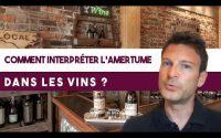 Comment interpréter l'amertume dans les vins ? (Leçon n°91)