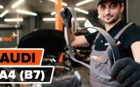 Comment remplacer une сourroie poly v sur AUDI A4 (B7) [TUTORIEL AUTODOC]