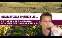Dégustons ensemble ! Cabernet d'Anjou (rosé), Domaine les Grandes Vignes, 2018 (leçon n°96)