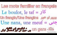 Leçon 137 : 30 MOTS D'ARGOT en FRANÇAIS - Vocabulaire Français Familier - les mots les plus utilisé