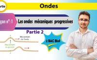 2 Bac Biof _ Ondes _ Leçon 1 : Les ondes mécaniques progressives (partie2)