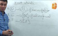 Cours de Tamazight, niveau débutant : leçon 10 - Tamsirt tis10