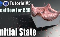 Realflow for C4d   TUTORIEL #5   Initial state & interactions entre particules.