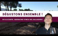 Dégustons ensemble ! DO Alicante, la Rambla del Peligrés, Finca del Balaguer (Leçon n°108)