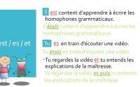 Vidéo-leçon - Les homophones grammaticaux