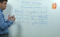 Cours de Tamazight, niveau débutant : leçon 55 - Tamsirt tis 55