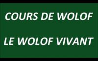 cours de wolof   leçon 4   les consonnes orales