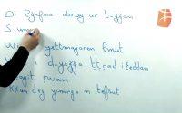 Cours de Tamazight, niveau débutant : leçon 64 - Tamsirt tis 64